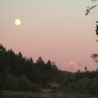 Reflections from Seattle: Transmissions and Transcendence